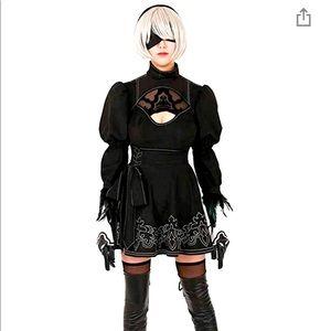 Cosplay/Halloween Costume